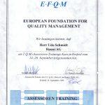 1996efqm-assessor